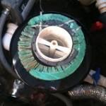 WNS falling apart filter 1
